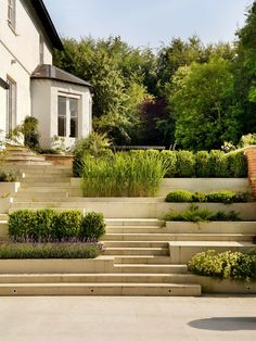 Amazing steps and planters