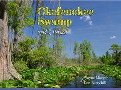 Photo Gallery | Okefenokee Swamp Park