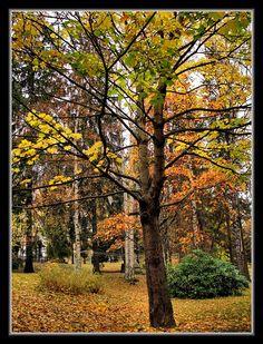 Helsinki, Finland Copyright: Maged El Zawawy