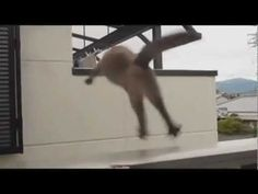 Epic Jump Fail by AWOLNATION - YouTube