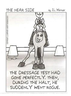 Dressage Funnies!