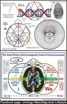 God's World umlingo juice Spirit Science, Science And Nature, Sacred Geometry Symbols, Les Chakras, Quantum Physics, Pentacle, Alchemy, Magick, Mathematics