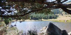 Site préservé sur le massif du Madres, surplombée par le Mont Coronat, la Réserve Naturelle ravira les amoureux de la nature et des grands espaces