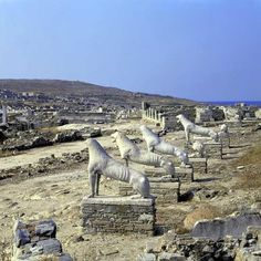 The Sacred Island of Delos - Greece, where no one was born (except Apollo and Artemis) and no one died. Best Greek Islands, Greece Islands, Greece Itinerary, Greece Travel, Delos Greece, Mykonos Greece, Athens Greece, Cool Places To Visit, Places To Travel