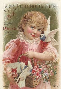 Little Birdie Blessings : A Sweet Little Girl and her Birds