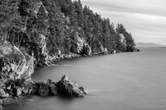 Autumn Coastline, Larrabee State Park, Washington, 2015 | Click the picture above for information on purchasing a fine art photography wall print. | #blackandwhite #landscape