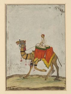 A camel with its rider playing kettledrums in the Mughal Empire.