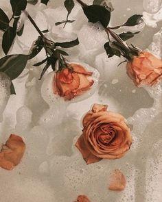 Ideas flowers photography wallpaper beauty roses for 2019 Orange Aesthetic, Flower Aesthetic, Aesthetic Grunge, Aesthetic Art, Aesthetic Body, Aesthetic Coffee, Beige Aesthetic, Aesthetic Beauty, Aesthetic Vintage