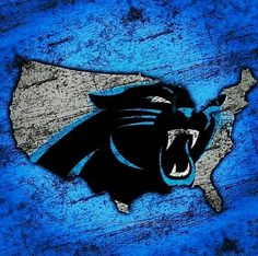Panthers Nation! Cam Newton Panthers, Panthers Team, Carolina Panthers Football, Panther Football, Carolina Pride, Carolina Blue, North Carolina, Carolina Panthers Wallpaper, Nfl Football Teams