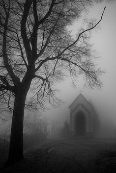 Silence... eerie mausoleum looking building deep into the fog.