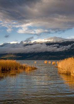 Μιτσικέλι | Βουνά | Φύση | Ν. Ιωαννίνων | Περιοχές | WonderGreece.gr Greece, Mountains, Nature, Travel, Greece Country, Naturaleza, Viajes, Destinations, Traveling