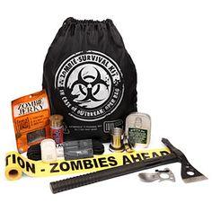 Zombie Survival Kit.....enough said