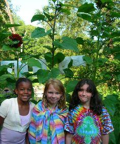 15 green summer camps