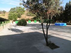 Plaza de cheniles con zona de esparacimiento.