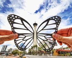 Stratosphere_Butterfly-577d0635dbacd__880