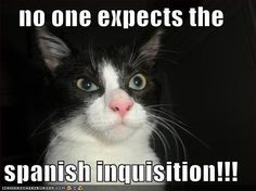 Google Image Result for http://images1.fanpop.com/images/photos/2600000/lolcats-lol-cats-2650600-500-374.jpg