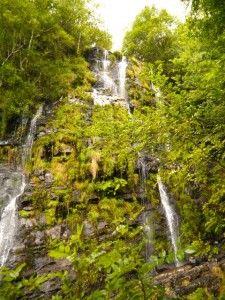 Asturias: Ruta Cascada de la Seimeira