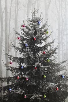 makeshift xmas tree