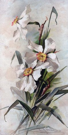 White Floral Painting