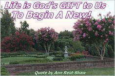 God's daily gift to us is LIFE! It's never too LATE to begin a new! Each day we are given the opportunity to begin again!