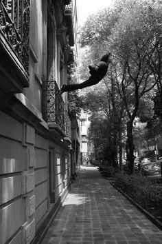 """""""Salto al Vacío"""" de Mentalmorfosis  Foto realizada en colaboración: Leye Nedvedovich, Alex Marín y Kall, Ale Carrera, Erick De La Fuente, Franz De Paula y Paty Carrera en la Casa de Cultura Tabasco (Berlín 33, Col. Juárez) el 17 de mayo del 2012.  Homenaje a """"Leap into the Void"""" de Yves Klein"""