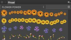 FREE FLOWER POWER BRUSHES for Affinity Photo and Affinity Designer.