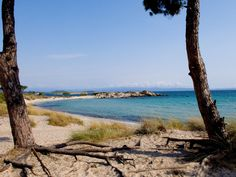 Karydi #beach #Sithonia #Halkidiki  http://apartments-panagi.com
