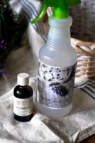 Serendipity Refined Blog: What's with the Lavender?! - Welcome to Serendipity Refined.