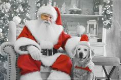 black and white Sunday photo: Will you take your dog to meet Santa