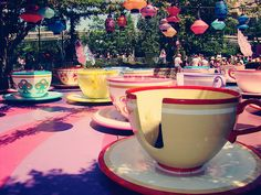 The Tea Cups, rode this at Disney Land and still do.....Favorite ride....we see how fast we can get going and everyone watches us cuz we are the fastest...