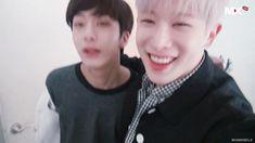 HyungWonho   •K-Pop• Amino