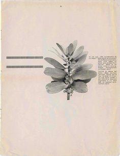 Dada Periodicals - Merz - Kurt Schwitters