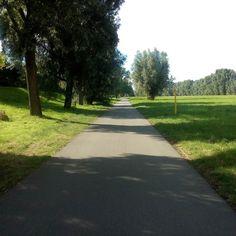 zwischen #Seckenheim und #Mannheim  #radlhasen #Neckar #Neckartour #Neckarradweg #Neckarradtour #Neckartal #Fahrrad #Fahrradtour #Radreise #Radurlaub #Radwandern #Bike #bikelover #biketour #biketravel #BW #papablog #papablogger #papa #vatertochter #fatherhood #stolzerpapa #mädchenpapa #bodehase - Eine Papa-Tochter-Radtour