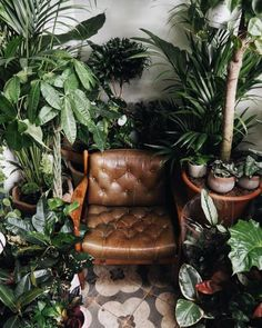 Social distancing like: plants are friends. Room With Plants, House Plants Decor, Plant Decor, Bohemian Bedroom Decor, Boho Room, Boho Decor, Faux Plants, Indoor Plants, Ar Fresco