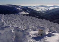ubytování na Šumavě - Magical Forest, Mountain Range, Czech Republic, Southern, Outdoor, Beautiful, Bohemia, Outdoors, Magic Forest