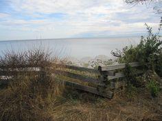Scene from Sunshine Coast, B.C., Canada