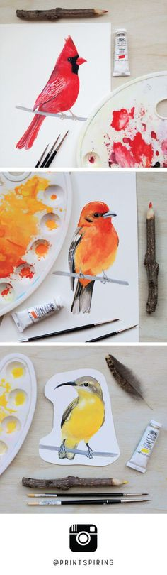 Watercolor & Gouache Bird Paintings by PRINTSPIRING | Red Cardinal, Flame-coloured Tanager, Yellow Bellied Sunbird | Work in progress | Sketchbook Art | Painting a day | Creative space, studio table: