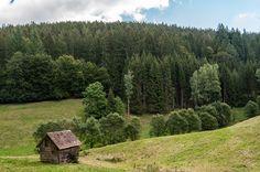 In der Nähe des Simonsbrunnens, Baiersbronn