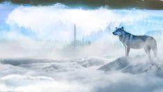 Frozen wilds of future