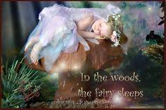 Fairy on her mushroom Fairy Land, Fairy Tales, Dream Art, Sleep Tight, Studio Portraits, Faeries, Sweet Dreams, Mushroom, Wings