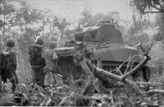M4 Sherman tank and men of the US 1st Marine Division moving toward the airfield at Cape Gloucester, New Britain, Bismarck Archipelago, Dec 1943 ...iles salomon