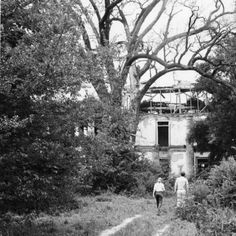 Seven Oaks plantation in Kenner Louisiana circa 1970 :: State Library of Louisiana Historic Photograph Collection Old Mansions, Abandoned Mansions, Abandoned Houses, Abandoned Places, Old Houses, Southern Plantation Homes, Southern Mansions, Southern Homes, Plantation Houses