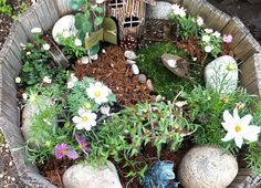 Fairy gardens are closely related, and are simply miniature gardens tended by mythical fairy creatures. Description from pinterest.com. I searched for this on bing.com/images