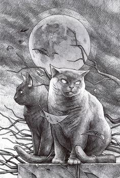 Cat and Cat by Daniel Grzeszkiewicz