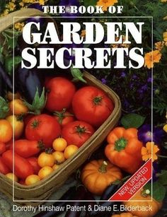 The Book of Garden Secrets by Dorothy Hinshaw Patent