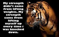 Image result for my strength came from