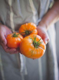 peonyandbee:  thevegetablemarket:(via Tomato Salad Recipe wth Burrata Cheese on …   Vegetables, berries &…)