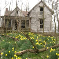Old farmhouse in Perryville, KY. This is one of my favorite farmhouse repins.