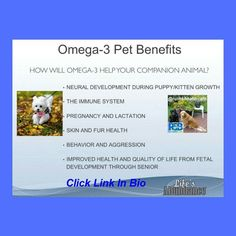 Dear Pet Parent!  Here is a message as a rep of Lifes Abundance that I would like to share with you.  I am so thrilled about this! We Have Sealogix Omega-3 Ultra-Pure Fish Oil for dogs and cats!  You asked for it and now were thrilled to provide you with an amazing fish oil supplement in two different sizes!  Offered in 2-oz. and 8-oz. bottles this formula features an ideal concentration of 30% DHA and EPA for the overall health of dogs and cats.  Click on the link in my bio! . . . #dogs…