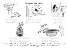 nid d'oiseau maternelle – RechercheGoogle Montessori Activities, Movie Posters, Recherche Google, Free Coloring, Nests, Film Poster, Billboard, Film Posters